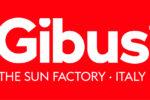 Gibus_